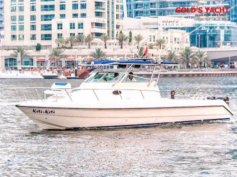 Boat rental in Dubai Marina. Boat 31 ft, with capacity for 5-10 people